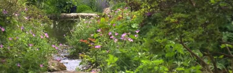 Le Jardin François