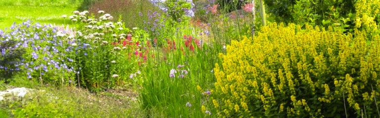 Le jardin du Bois du Puits