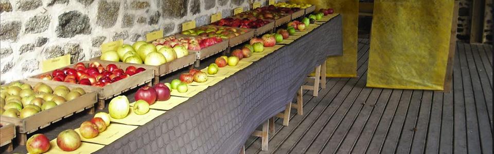 Fête de la Pomme Ferme Ornée de Carrouges