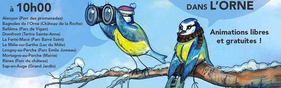 Grand comptage des oiseaux Orne